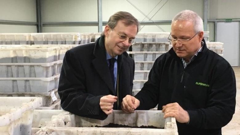 Bundestagsabgeordneter Thomas Rachel (l.) informierte sich bei dem Inhaber des Familienunternehmens Martin Langhoff, über die Wurmzucht der Firma Superwurm.